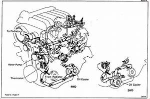 94 Jeep Wrangler Fuel Pump Wiring Diagram