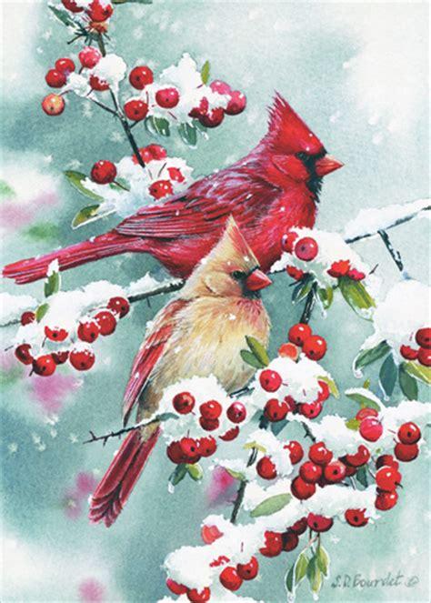 winter jewels cardinals susan bourdet christmas card