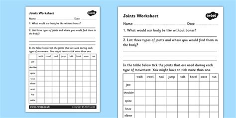joints worksheet joints the human movement muscles