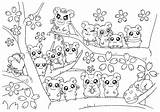 Coloring Cherry Blossoms Tree sketch template