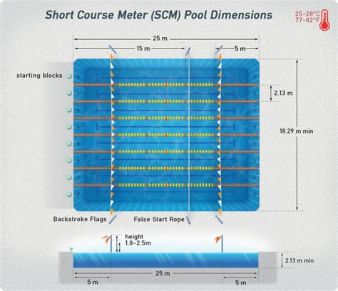 pool dimensions swimming pool dimensions