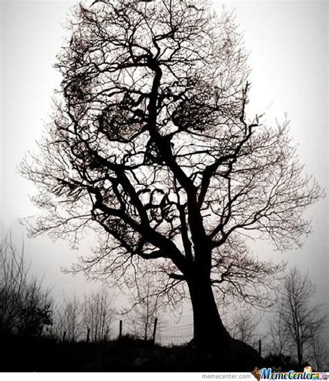 Skull Tree Memes Best Collection Funny Pictures