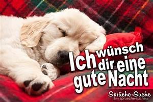 Gute Nacht Sprüche Lustig : gute nacht spruch welpe spr che suche ~ Frokenaadalensverden.com Haus und Dekorationen