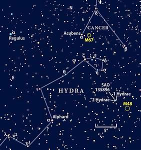 hydra_chart_0408_750.jpg
