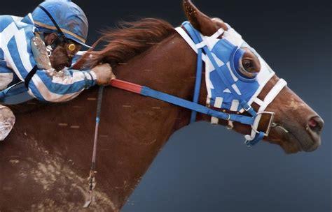 secretariat horse movies race movie change poster