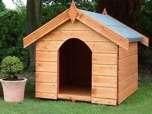 Dog kennels yard kennel for Puppy dog kennels