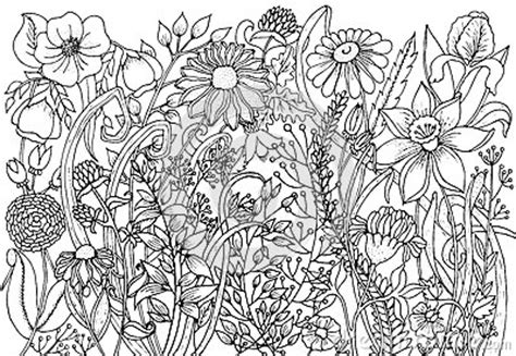 hand drawn  ink background  doodles flowers