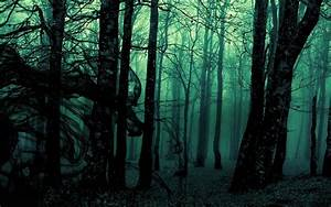 Dark, Forest, Hd, Wallpaper, 61, Images
