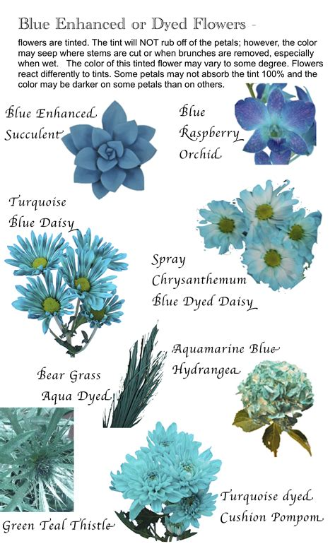 blue flower names flower names by color hayley s wedding tips 101