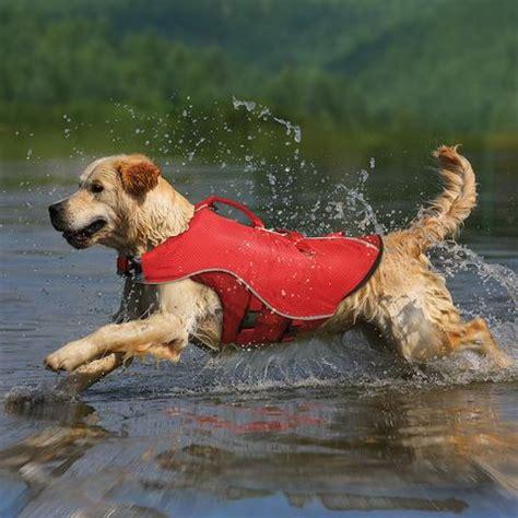 dog life vest kurgo dog life jacket