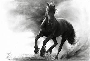 10+ Cool Horse Drawings for Inspiration | Drawings ...