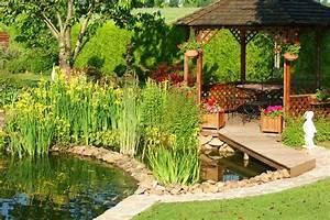 Jardin Avec Bassin : initiation aux plantes de bassin le paysagiste ~ Melissatoandfro.com Idées de Décoration