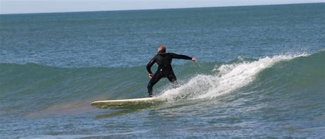 Surfers and whales share the water at Middleton | PHOTOS ...