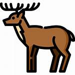 Deer Icon Icons