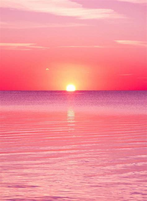 pink sunset pink sunset sunset wallpaper