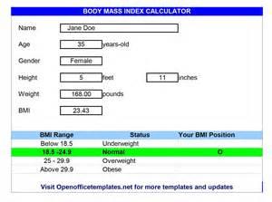 Body Index Mass BMI Calculator