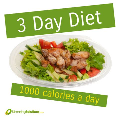 1000 kalorien diät 3 day meal plan for a 1000 calorie diet slimming solutions
