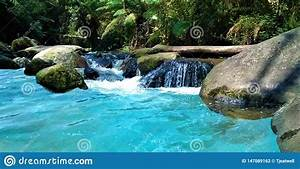 Beautiful, Blue, Water, River, In, The, Forest, Stock, Photo
