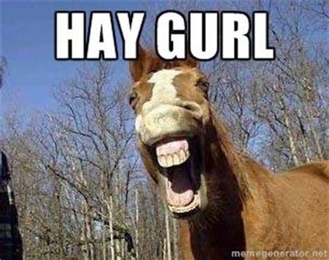 Hay Meme - hay gurl horse meme generator funny pinterest meme generators and horse meme
