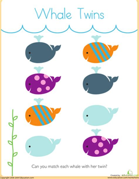 Matching Whale Twins  Worksheet Educationcom