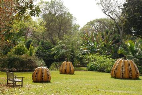 fairchild tropical botanic garden the glass sculpture in one of the buildings picture of