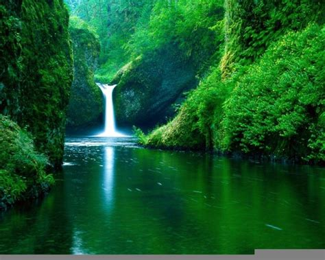 nature backgrounds pictures wallpaper cave