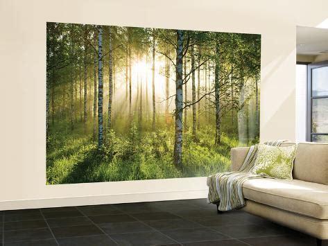 forest scene wallpaper mural behangposter bij allpostersbe