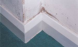 how to identify repair protect against damp at home With how to stop damp in bathroom