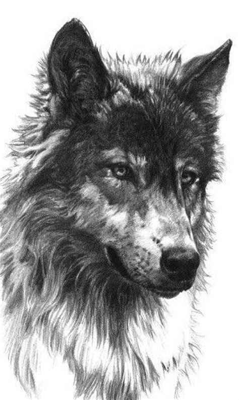Lone Wolf | Wolf tattoos, Wolf tattoo design, Wolf art