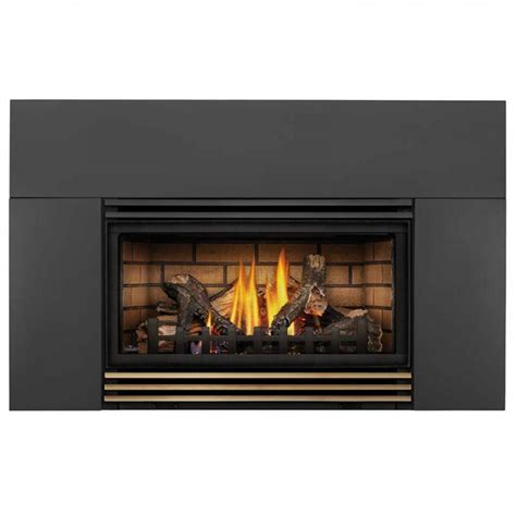 Napoleon Roxbury 30 Gas Fireplace insert
