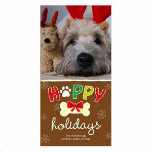 Cutest pet holiday cards from around the web