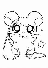 Hamtaro Coloring Pages Animal Cartoon Printable Characters Drawings Tv Colouring Kawaii Picgifs Cool Draw Series Clipart Easy Cartoons Helpot Drawing sketch template