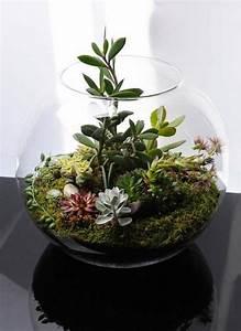 Pflanzen Für Terrarium : wie baue ich ein terrarium pflanzen und passende glasgef e ~ Orissabook.com Haus und Dekorationen