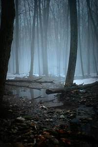 #landscape #mystic landscape #dark arts #animals in art # ...