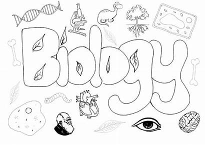 Biology Science Colouring
