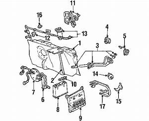 Won T Start I Can Hear The Fuel Pump  Diagram  Auto Wiring