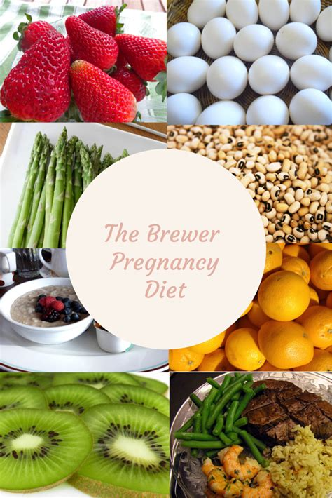 resources   brewer pregnancy diet nutrition