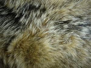 Fur Texture 17 by Fox-N-Wolf on DeviantArt