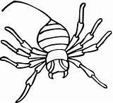 Ausmalbilder Zum Ausdrucken Imprimir Aranhas Spinnen Desenhos Spider Spinne Coloring Ausmalbild Colorir Kostenlos sketch template