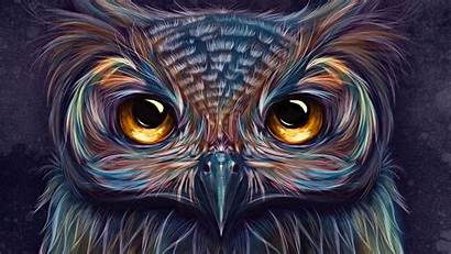 Owl 4k Colorful Digital Artwork Artist Wallpapers