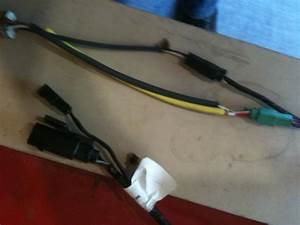 Tbw Plugs
