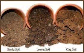 GQT: Soil Structure, Texture and Tilth   Old School Garden