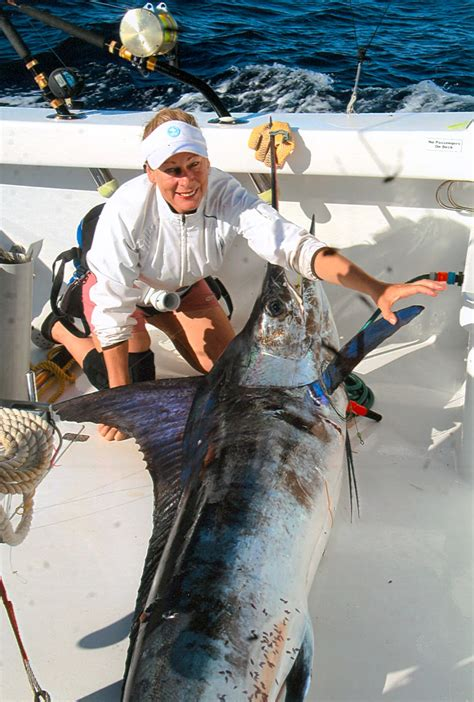 marlin striped audax record fish fishes ocean largest biggest pacific max
