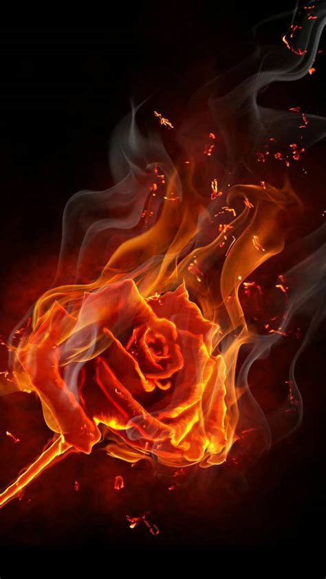 Burning Rose Wallpaper By Georgekev  6d  Free On Zedge™
