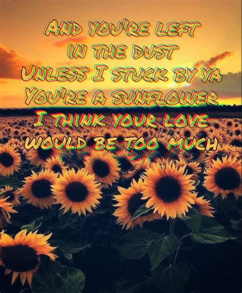sunflower lyrics  post malone  swae lee