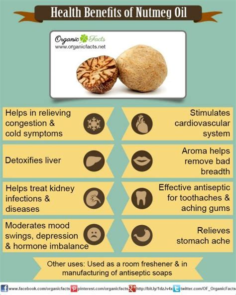 17 best ideas about nutmeg on essential