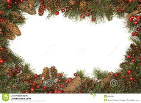 christmas border  pine branches royalty  stock image