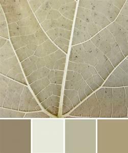 Wandfarbe Grau Beige : wandfarbe beige grau die neuesten innenarchitekturideen ~ Michelbontemps.com Haus und Dekorationen