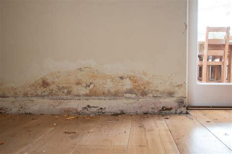 probleme moisissure chambre problme humidit maison amazing astuce maison with problme