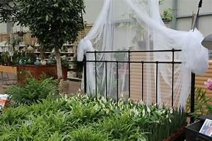 Zimmerpflanzen Für Schlafzimmer : pflanzen f r das schlafzimmer gartencenter zulauf ~ A.2002-acura-tl-radio.info Haus und Dekorationen